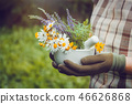 Woman holding in her hands mortar of healing herbs 46626868
