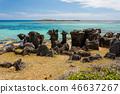 沿海 山石的 海滩 46637267