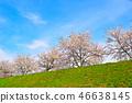 Sakurakage Tochigiuchi河岸 46638145