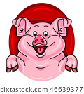 Pig face. Pig isolated. Pig portrait 46639377