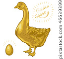 Golden Goose, goose on a white background 46639399