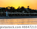 Sunset over the red sea palm tree silhuettes hotel in Makadi Bay Egypt 46647213