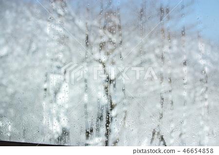 1100고지,습지,설경,눈꽃,눈, 46654858
