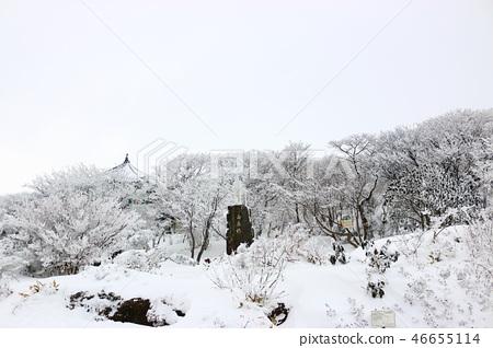 1100고지,습지,설경,눈꽃,눈, 46655114