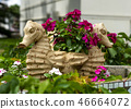 Vase with flowers in the form of seahorse 46664072