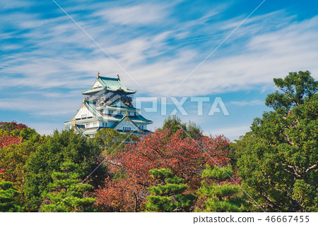 大阪城 46667455