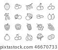 Wild berry line icon set. 46670733