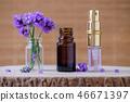 lavender, oil, aroma 46671397