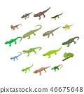 Lizard icons set, isometric 3d style 46675648