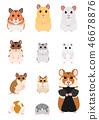 矢量 動物 倉鼠 46678876