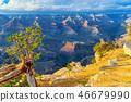 arizona, canyon, grand 46679990