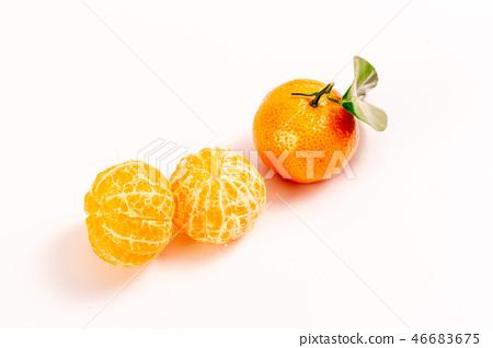新鲜砂糖橘 46683675