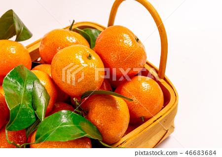 新鮮砂糖橘 46683684