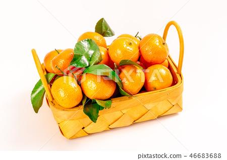 新鮮砂糖橘 46683688