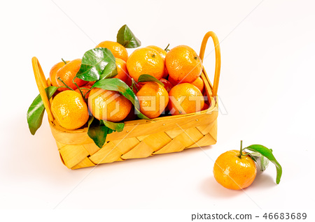 新鲜砂糖橘 46683689