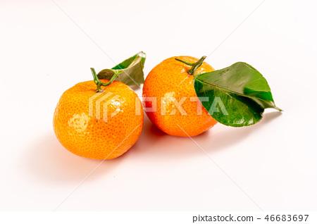 新鮮砂糖橘 46683697
