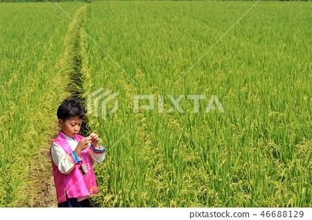소년농부 46688129
