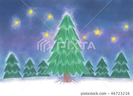 밤하늘과 나무 46723216