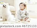 유아, 거실, 강아지 46725133