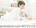 유아,베이비,아기,어린이,포메라니안,강아지,애완동물,반려동물,반려견,집 46725135