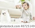유아, 강아지, 개 46725149