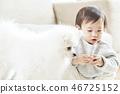 유아, 어린이, 강아지 46725152