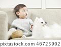 유아,베이비,아기,어린이,포메라니안,강아지,애완동물,반려동물,반려견,집 46725902