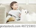 유아,베이비,아기,어린이,포메라니안,강아지,애완동물,반려동물,반려견,집 46725903