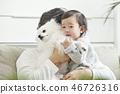 유아,베이비,아기,어린이,가족,포메라니안,강아지,애완동물,반려동물,반려견,집 46726316