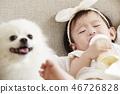 유아,베이비,아기,어린이,포메라니안,강아지,애완동물,반려동물,반려견,집 46726828