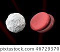 leucocytes and blood cells isolated black 46729370