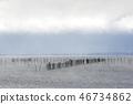 머리 폭풍 비와코의 아침 46734862