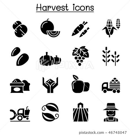 Harvest icon set 46748047