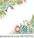 Succulents banner watercolor 46749701