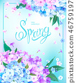 Spring background with Phlox 46759197