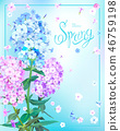 Spring background with Phlox 46759198