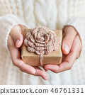 ปีใหม่,นำเสนอ,ของขวัญ 46761331