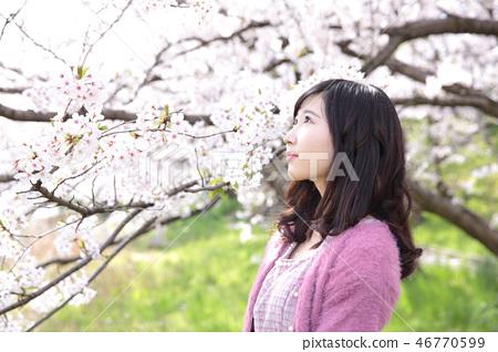 젊은 여자와 벚꽃 46770599