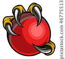 cricket, claw, ball 46775513