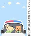 Dog Cat Ambulance Background Illustration 46776591