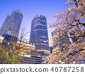 Nagoya city scenery Nagoya station square rotary and night cherry blossoms 46787258