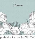 잎, 장미, 꽃 46798257