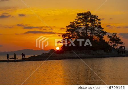 소등섬,장흥군,전남 46799166
