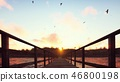 The camera flies over a wooden bridge on a tropical island with an exotic white beach on sunset. 3D 46800198