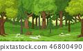 Cartoon Forest Landscape 46800490