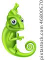 Chameleon Cartoon Lizard Character  46800570