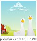 Farm animal background with ducks 46807390