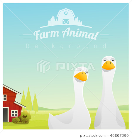 Farm animal background with ducks 46807390