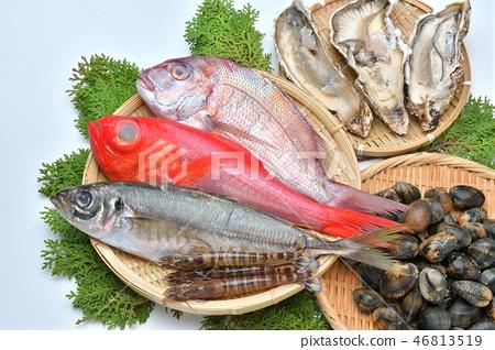 小心)小垃圾背景上留有小的划痕污垢。新鮮的海鮮/鮮魚(金鮭魚,鯖魚,鮭魚,牡蠣,蛤蜊,蝦) 46813519