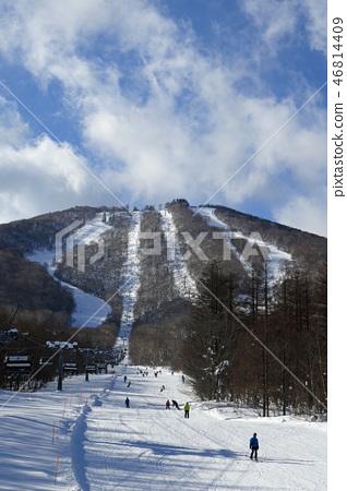 Appi Kogen滑雪區Zylageland全景 46814409